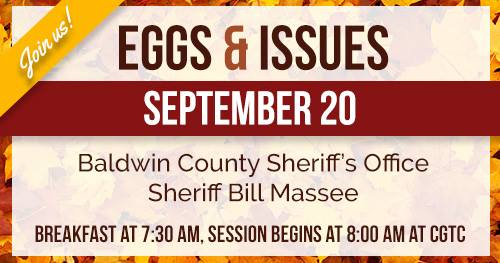 Eggs and Issues Image