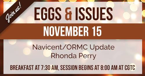 Eggs & Issues Image