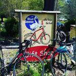 April Fools Bike Ride Image